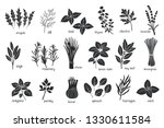 black herbs spices silhouettes. ... | Shutterstock .eps vector #1330611584