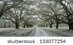 Infrared Photo Of Road Lined...