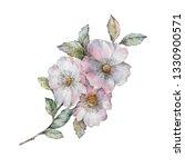 flowers watercolor illustration.... | Shutterstock . vector #1330900571