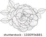 illustration with rose sketch... | Shutterstock .eps vector #1330956881