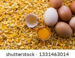 eggs over yellow corn | Shutterstock . vector #1331463014