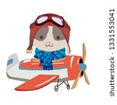 Cartoon Cat Fly On A Airplane....