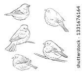 vector line drawing bird... | Shutterstock .eps vector #1331676164