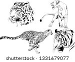 vector drawings sketches... | Shutterstock .eps vector #1331679077