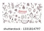 wild berries and fruits vector... | Shutterstock .eps vector #1331814797