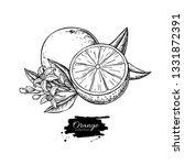 orange vector drawing. summer... | Shutterstock .eps vector #1331872391