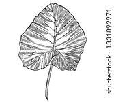 tropical leaves illustrations.... | Shutterstock . vector #1331892971