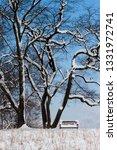 tree during the winter season   Shutterstock . vector #1331972741