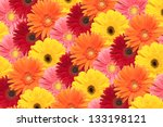 an arrangement of daisies are... | Shutterstock . vector #133198121