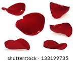 rose petal collection isolated... | Shutterstock . vector #133199735