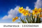 springtime  easter time. spring ... | Shutterstock . vector #1332060464