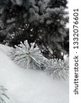fir branches in hoarfrost. snow ... | Shutterstock . vector #1332076601