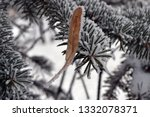 tree branches in the snow.... | Shutterstock . vector #1332078371