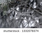 tree branches in the snow.... | Shutterstock . vector #1332078374