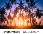 silhouette coconut palm trees... | Shutterstock . vector #1332186074