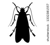 clothes moth clothing moth fly... | Shutterstock .eps vector #1332381557