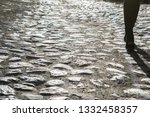 old cobbled road in center of...   Shutterstock . vector #1332458357