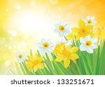 vector of daffodil flowers on... | Shutterstock .eps vector #133251671