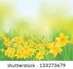 vector of daffodil flowers on... | Shutterstock .eps vector #133273679
