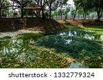 chiangmai  thailand. march  12... | Shutterstock . vector #1332779324
