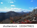 beauty of nature in the... | Shutterstock . vector #1333479821