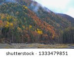 beauty of nature in the... | Shutterstock . vector #1333479851