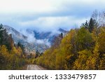 beauty of nature in the... | Shutterstock . vector #1333479857