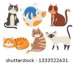 Stock photo cute cats fluffy cat sitting kitten character or domestic animals happy funny playful and sleep 1333522631