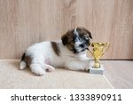 puppy jack russell nibbles cup. ... | Shutterstock . vector #1333890911