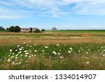 summer flowers green meadow on...   Shutterstock . vector #1334014907