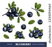 vector blueberry hand drawn... | Shutterstock .eps vector #1334094464