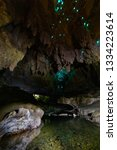 New Zealand. Waipu Cave....