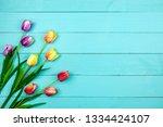 spring flower of multi color... | Shutterstock . vector #1334424107
