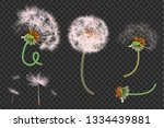 vector illustration of spring... | Shutterstock .eps vector #1334439881