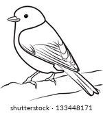 bird outline vector