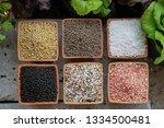 chemical fertilizers  main... | Shutterstock . vector #1334500481