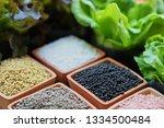 chemical fertilizers  main... | Shutterstock . vector #1334500484