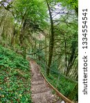 footpath with staircase in a... | Shutterstock . vector #1334554541