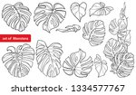vector set with outline... | Shutterstock .eps vector #1334577767