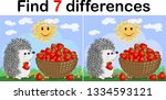 find the differences between... | Shutterstock . vector #1334593121