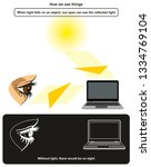 how we see things infographic... | Shutterstock .eps vector #1334769104
