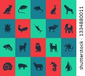 fauna icons set with elephant ... | Shutterstock .eps vector #1334880011