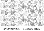 vector hand drawn seafood... | Shutterstock .eps vector #1335074837