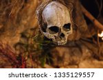 "Small photo of Human scull hanging on rope. Death symbol. Fear and horror concept. Occult decoration for ""Dia de los Muertos"" and Halloween. Ritual sacrifice. Spooky scull isolated. Scary skeleton. Danger concept."