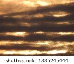 flock of wild geese flying... | Shutterstock . vector #1335245444