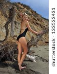 beautiful swimsuit model posing ... | Shutterstock . vector #133533431
