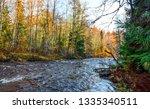 forest river landscape. autumn...   Shutterstock . vector #1335340511