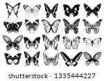 hand drawn black and white... | Shutterstock .eps vector #1335444227