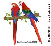 Couple Of Scarlet Macaw On A...
