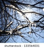 Icicles On The Branches